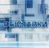 Выставки в Ильинском