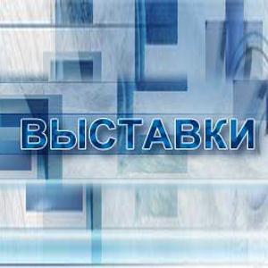 Выставки Ильинского
